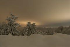 Śnieg zakrywał zima krajobraz przy nocą Obrazy Stock