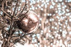 Śnieg zakrywająca dekoraci piłka na choince pienie fotografia stock