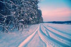 Śnieg zakrywająca droga wzdłuż lasu zdjęcie stock