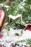 Śnieg zakrywająca gwiazdowa wypiekowa cyna Obrazy Stock