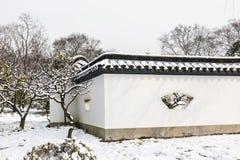 Śnieg zakrywająca sosna obraz stock