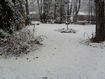 Śnieg zakrywający Obrazy Stock