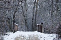 Śnieg Zakrywający Footbridge w lesie Głęboko zdjęcia stock
