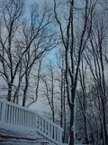 Śnieg zakrywający pokład Obraz Stock