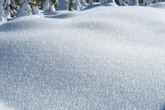 Śnieg zakrywający pole Obrazy Royalty Free