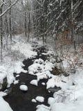 Śnieg Zakrywający strumyk Fotografia Stock