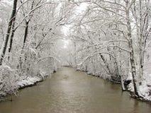 Śniegi zakrywający drzewa wysklepia nad rzeką Obrazy Royalty Free