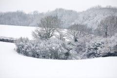 Śniegi zakrywający pola Zdjęcia Royalty Free