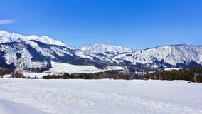 Śniegu krajobraz Fotografia Royalty Free