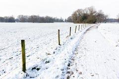 Śniegu krajobraz z ścieżką między łąkami Obraz Stock