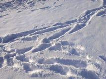 Śniegu nawierzchniowy tło Obraz Stock