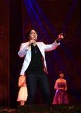 Śpiewać w sceny przedstawieniu w nowego roku przedstawieniu Obrazy Royalty Free
