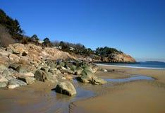 Śpiewacka plaża Obraz Royalty Free