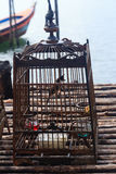Śpiewacki ptak w klatce Obrazy Stock