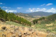 Śródlądowy Środkowy Gran Canaria, Artenara teren Zdjęcia Stock