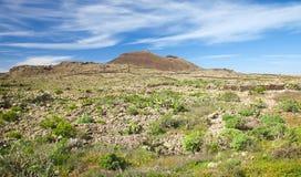 Śródlądowy Fuerteventura; Obrazy Stock
