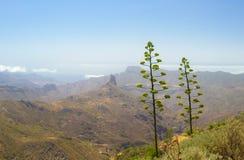 Śródlądowy Gran Canaria Zdjęcie Royalty Free