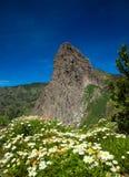 Śródlądowy los angeles Gomera Obraz Royalty Free