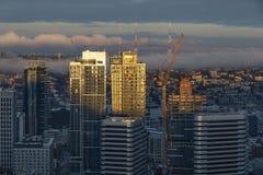 Śródmieście Seattle linia horyzontu zdjęcia royalty free