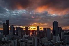 Śródmieście Seattle linia horyzontu fotografia stock