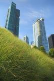 Śródmieście zieleni dach, Vancouver zdjęcie royalty free