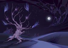 Śródnocny krajobraz z drzewem Fotografia Stock