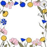 Śródpolna kwiatu rysunku granica dodatkowa eps kwiecista formata rama zawrzeć wektor Dziki botaniczny kwiat Wielki dla herbaciany ilustracja wektor