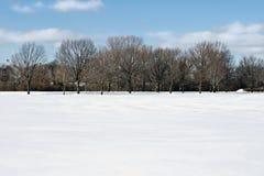 śródpolna linia śniegu drzewo Obraz Royalty Free