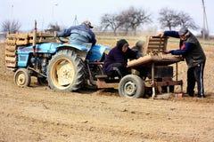 Śródpolna praca w obszarach wiejskich Transcarpathia w wiośnie Obrazy Royalty Free