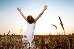 śródpolna pszeniczna kobieta zdjęcia royalty free