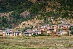 śródpolna ryżowa mała odgórna wioska Obrazy Stock