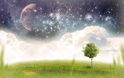 śródpolna zieleń ilustracja wektor