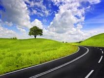 śródpolna zielona droga zdjęcia stock