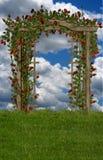 śródpolne róże Zdjęcia Royalty Free