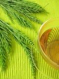 śródpolnego horsetail herbata fotografia stock