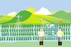 śródpolni ryż Pokaz z zwiększającą rzeczywistości informacją Technologia w rolnictwie Zdjęcia Stock