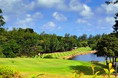 śródpolny golf Fotografia Royalty Free