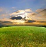 śródpolny zielony zmierzch fotografia stock