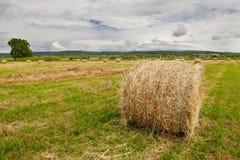 śródpolnych haystacks krasnodar region Russia obraz stock
