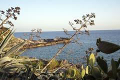 Śródziemnomorska pętaczka Obrazy Royalty Free