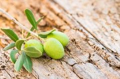 Śródziemnomorski karmowy tło, gałązka oliwna z zielonymi oliwkami na nieociosanym drewnianym stole zdjęcia royalty free