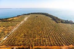 Śródziemnomorski krajobraz obraz royalty free