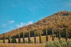 Śródziemnomorski krajobraz wzgórze w Włochy Zdjęcia Stock