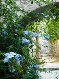 Śródziemnomorski miasteczko zdjęcie stock