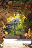 Śródziemnomorski ogród Zdjęcie Royalty Free