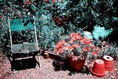Śródziemnomorski ogród Zdjęcia Royalty Free