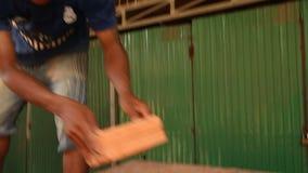 Średni niski kąt strzelał pracownicy rozładowywa cegły i broguje zbiory