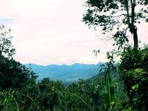 Średniogórza kształtują teren, Malezja Fotografia Royalty Free