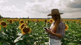 ?redniorolna dziewczyna pisa? na maszynie na smartphone blisko s?o?ce kwiatu plantacji zdjęcie wideo