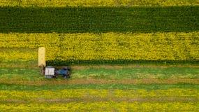 Średniorolna kośby trawa używać ciągnika z obrotowym kosiarzem zdjęcia stock
